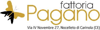 Logo-15_web